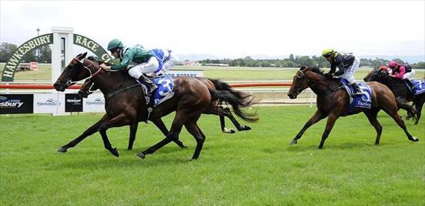 Joyful Journey - Hawkesbury - 26/02/2015