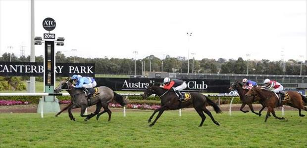 A Mist Opportunity - Canterbury Park - 31/08/2016